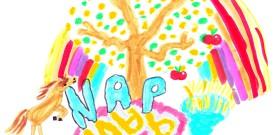 Journal des NAP n°3