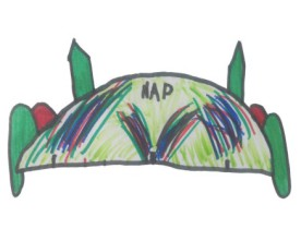 Journal des NAP n°5