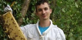 Il crée les abeilles les plus résistantes au monde sur le plateau de Saclay