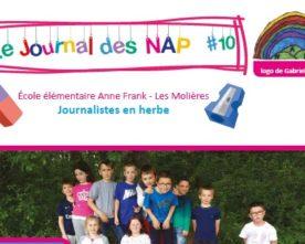 Journal des NAP n°10