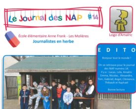 Journal des NAP n°14