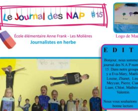 Journal des NAP n°15