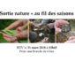 """Sortie nature """"au fil des saisons"""", samedi 31 mars"""